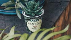 Kaiku Begetal, postres vegetarianos de almendra
