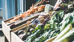 Lista de frutas y verduras de temporada